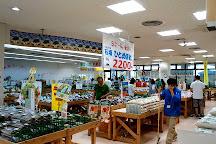 Farmer's Market Haisai! Yanbaru Market, Nago, Japan