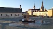 Естественная история Республики Татарстан на фото Казани