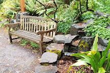 Hendricks Park, Eugene, United States