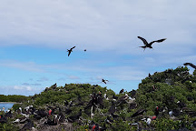Frigate Bird Sanctuary, Barbuda, Antigua and Barbuda