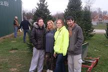 Bohman Christmas Tree Farm, Greensburg, United States