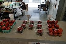 Knaus Berry Farm, Homestead, United States