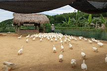 The Duck Stop, Phong Nha-Ke Bang National Park, Vietnam