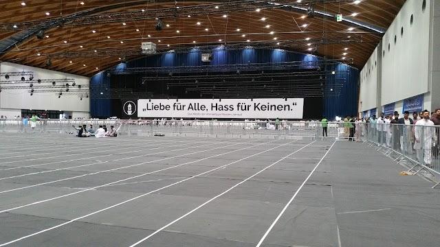 DM Arena