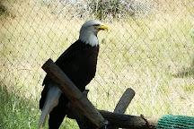 Badger Run Wildlife Rehab, Klamath Falls, United States