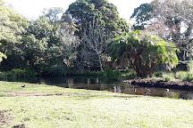 Arderne Gardens, Claremont, South Africa