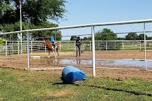 Texas Rose Horse Park, Tyler, United States