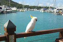 Renegade Fishing Charters, Hamilton Island, Australia