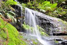 Wentworth Falls, Wentworth Falls, Australia