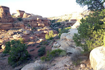 Big Spring Canyon Overlook, Canyonlands National Park, United States