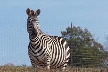Lazy L Safari Park, Cape Girardeau, United States