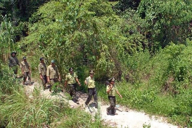 Parc national Yok Don