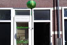Tea's Delight, Amsterdam, The Netherlands
