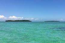 Tropic Water Sports, Key Largo, United States