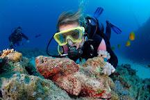 Dive Passion Mauritius, Trou d'eau Douce, Mauritius