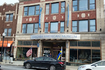 Swedish American Museum, Chicago, United States