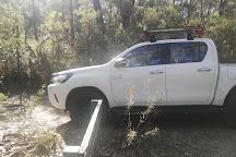 Twin Falls Lookout, Fitzroy Falls, Australia