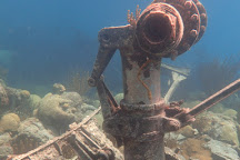 Blue Water Divers & Watersports, Sandys Parish, Bermuda