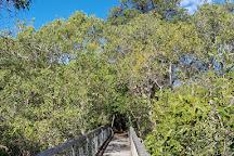 Yuraygir National Park, Grafton, Australia