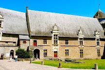 Chateau de Laval (Laval's Castle), Laval, France