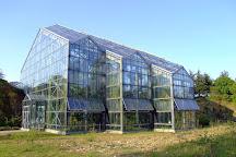 Botanischer Garten der Universitat Osnabruck, Osnabruck, Germany