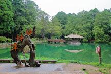 Sister Lake, Alishan, Taiwan
