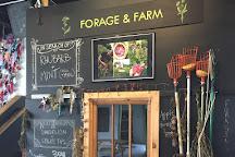 Urban Farm Fermentory, Portland, United States