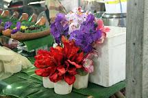 Khlong Lat Mayom Floating Market, Bangkok, Thailand