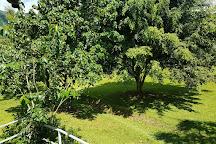 Casa Canales, Jayuya, Puerto Rico