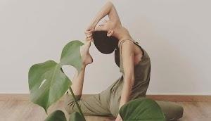 Yoga Travellers Home