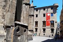 Palau de Lloctinent, Barcelona, Spain