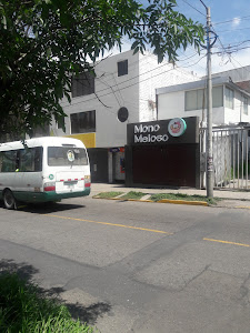 Mono Meloso 2