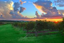 San Sebastian Winery, St. Augustine, United States
