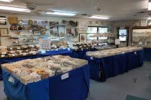 Sanibel Seashell Industries, Sanibel Island, United States