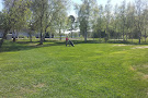 Tornio Golf