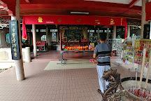 Snake Temple, Penang, Malaysia
