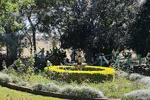 Vintner's Secret Vineyard, North Isis, Australia