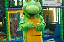 Fizzy Lizard, Huddersfield, United Kingdom
