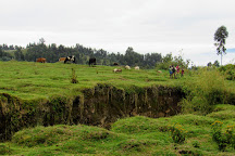 Volcanoes National Park, Ruhengeri, Rwanda