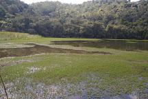 Parque Estadual Intervales, Ribeirao Grande, Brazil