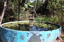 Ecocentro IPEC, Pirenopolis, Brazil