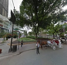 Chicago Horse & Carriage chicago USA