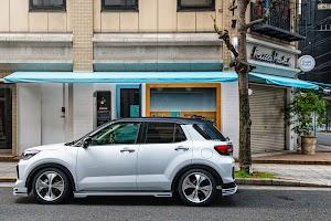 EasyCars Japan