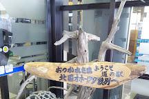 Okhotsk Ryu-hyo Museum, Abashiri, Japan