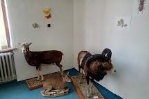 Ponitrianske Muzeum, Nitra, Slovakia