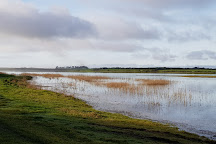 Our Ladys Island Lake, Wexford, Ireland