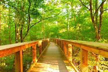 Congaree National Park, Hopkins, United States