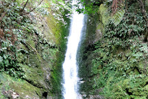 Ohau Stream Walk, Kaikoura, New Zealand