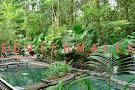Ecotermales Fortuna