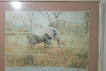 Modzi Arts, Lusaka, Zambia